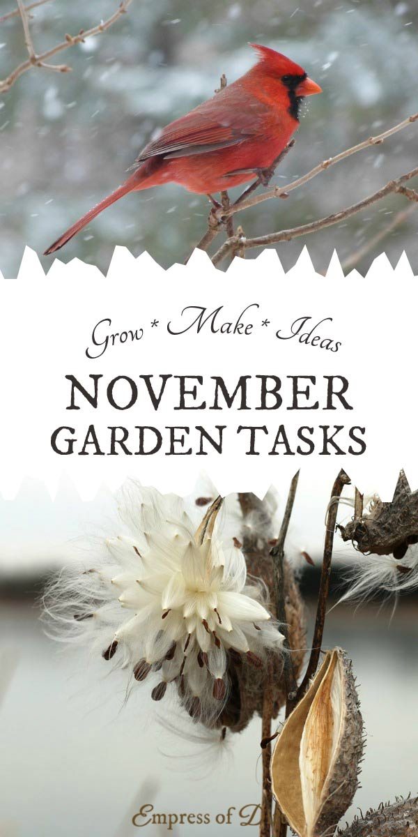 As fall turns to winter, and freezing temperatures set in, November is a quieter time in the four-season garden. It's a time to get caught up on some nice-to-be-done tasks, craft from the garden, and prepare for the growing season ahead.