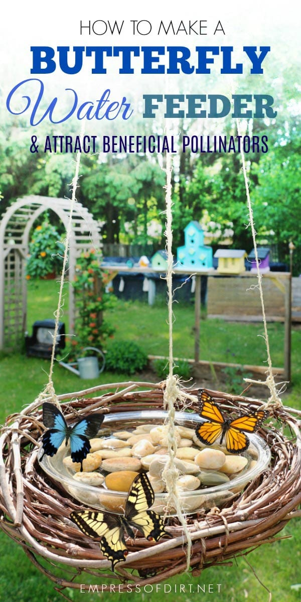 Make a grapevine wreath butterfly water feeder and attract beneficial pollinators to your garden.