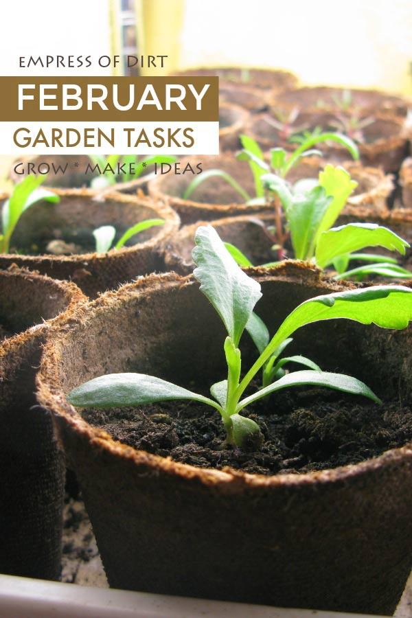 February garden tasks