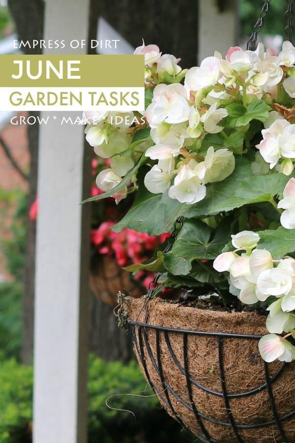 June garden tasks by Empress of Dirt