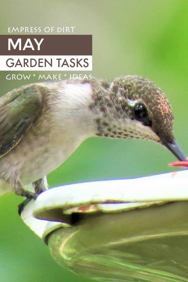May garden tasks by Empress of Dirt
