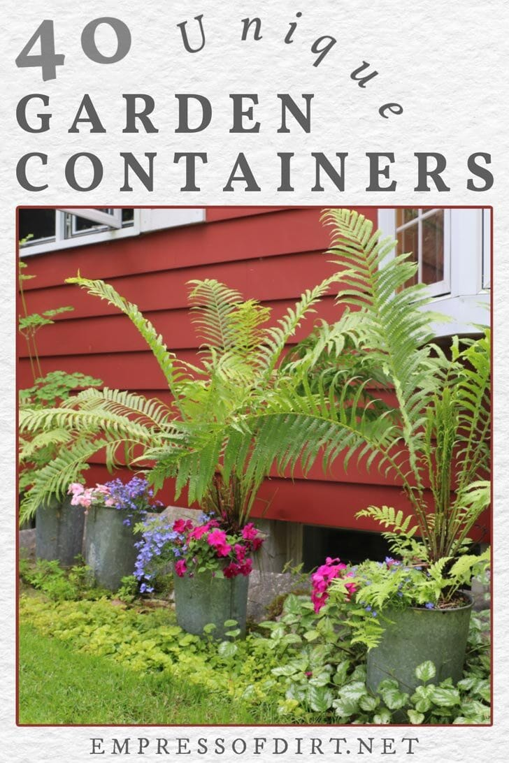 Unique garden containers with ferns and flowers.