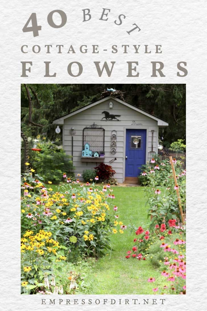 Cottage-style garden with lots of flowers.
