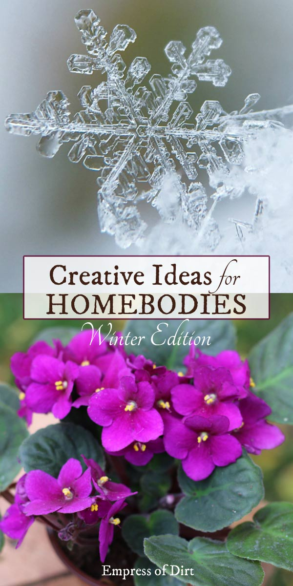 Creative Ideas for Homebodies | Winter Edition