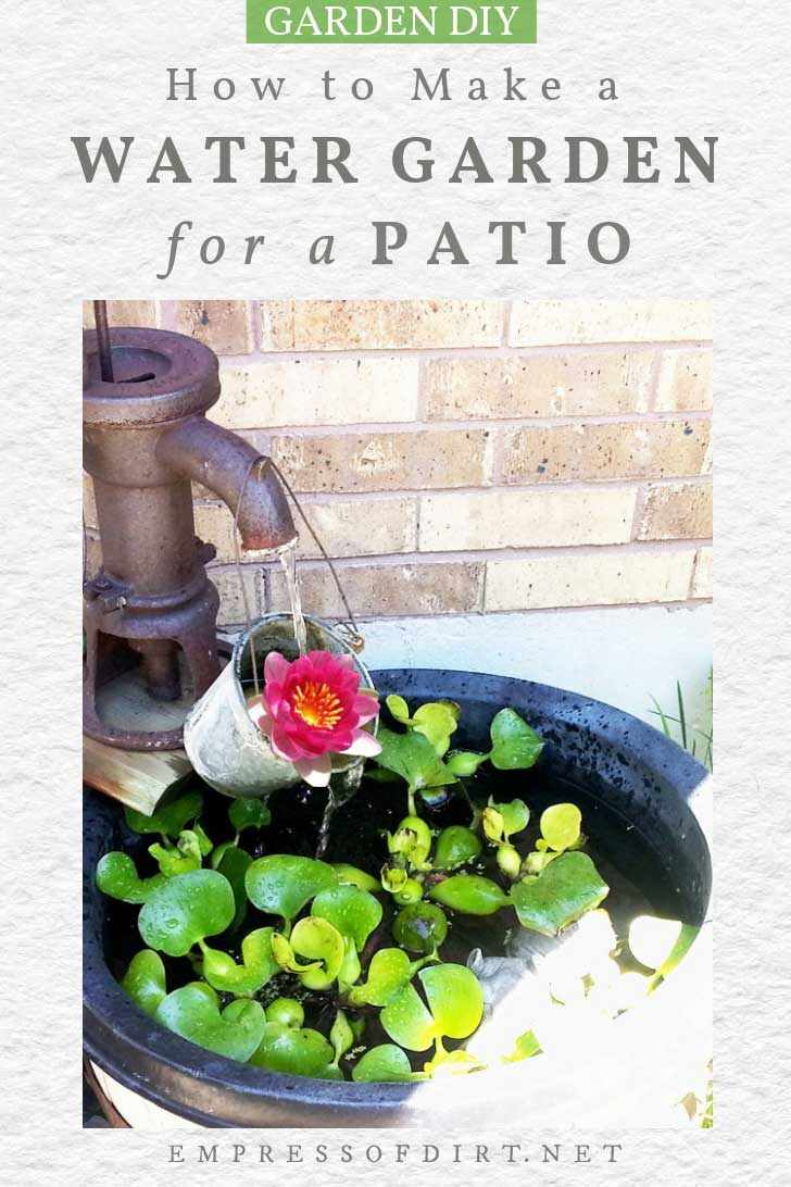 Patio container pond with water hyacinth and lily.