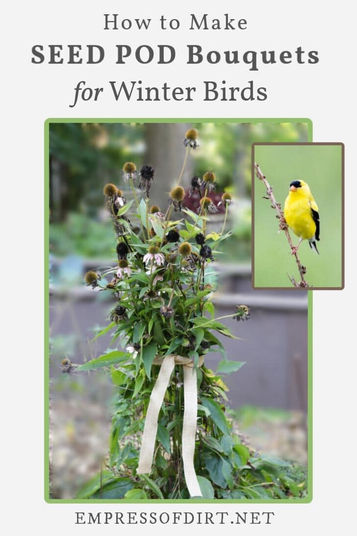 Seed pods wrapped in burlap ribbon in the garden and a goldfinch (bird).