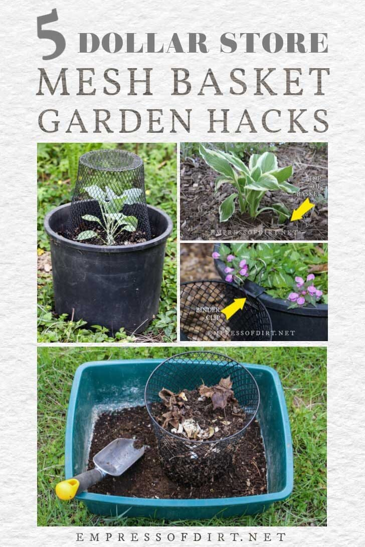 Examples of ways to use mesh baskets in the garden including plant cloches, compost sifter, and hosta root protector.