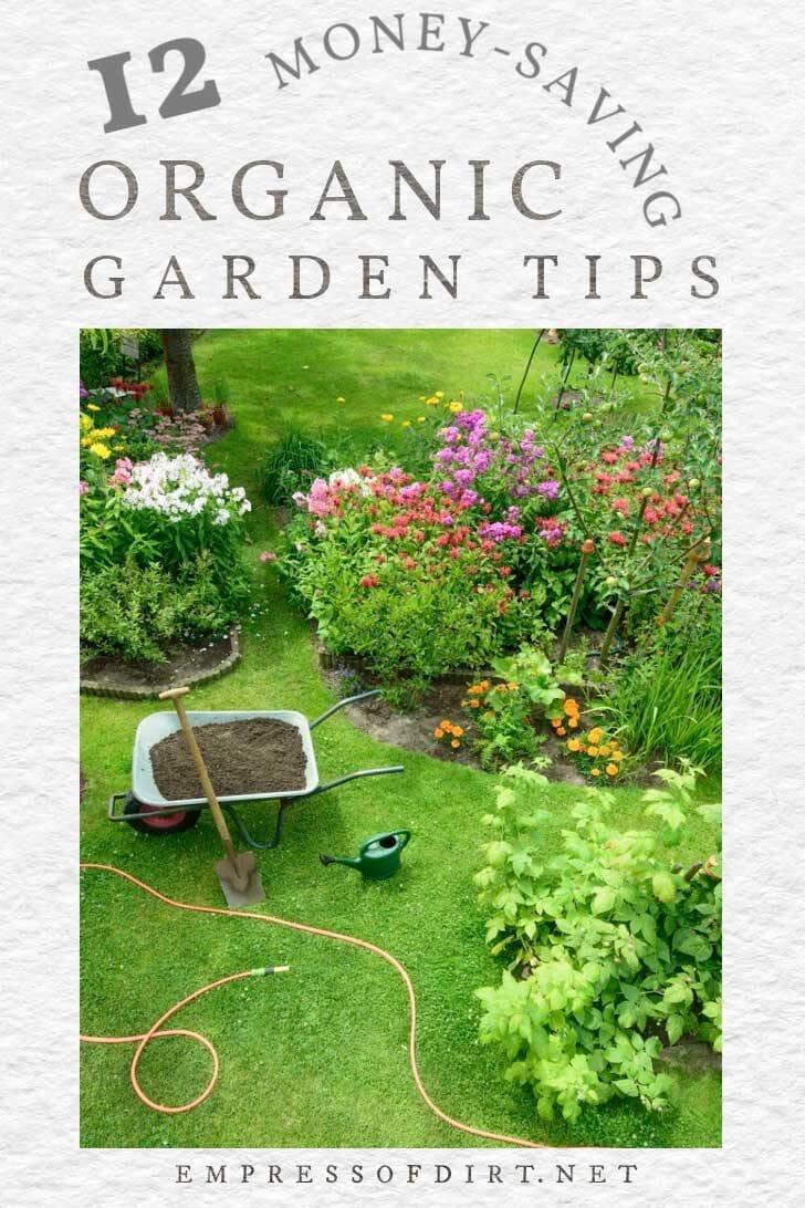 Flower garden with wheelbarrow and garden hose.