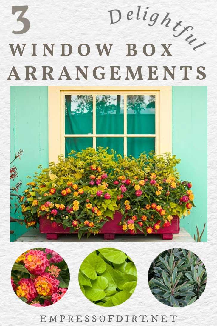 Colorful window box flower arrangement.