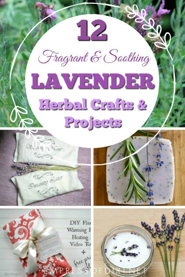 12 Lavender Crafts and Recipes