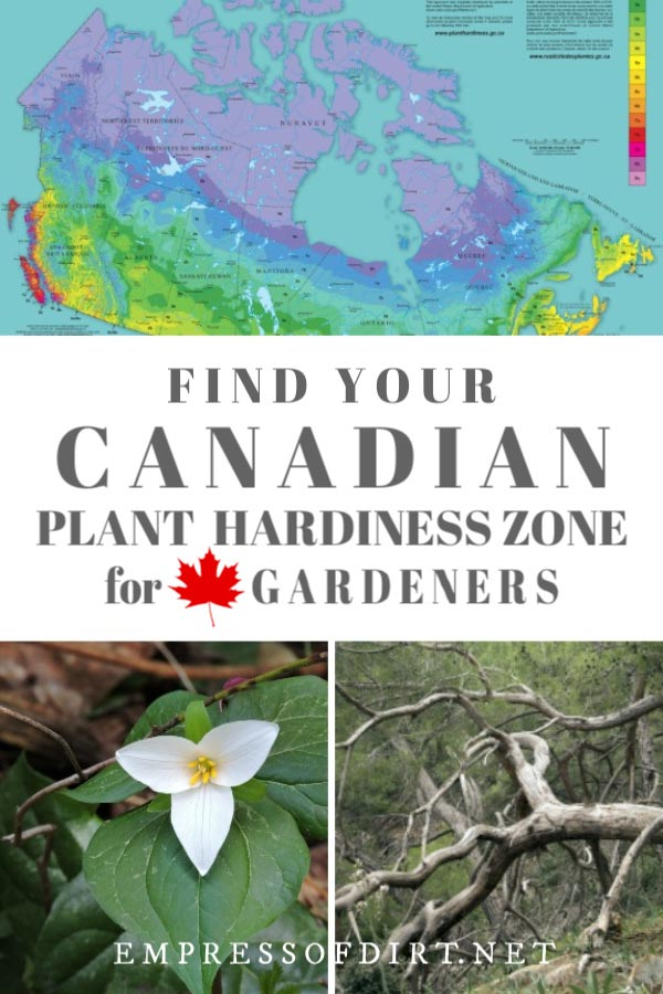 How to Find Your Canadian Plant Hardiness Zone