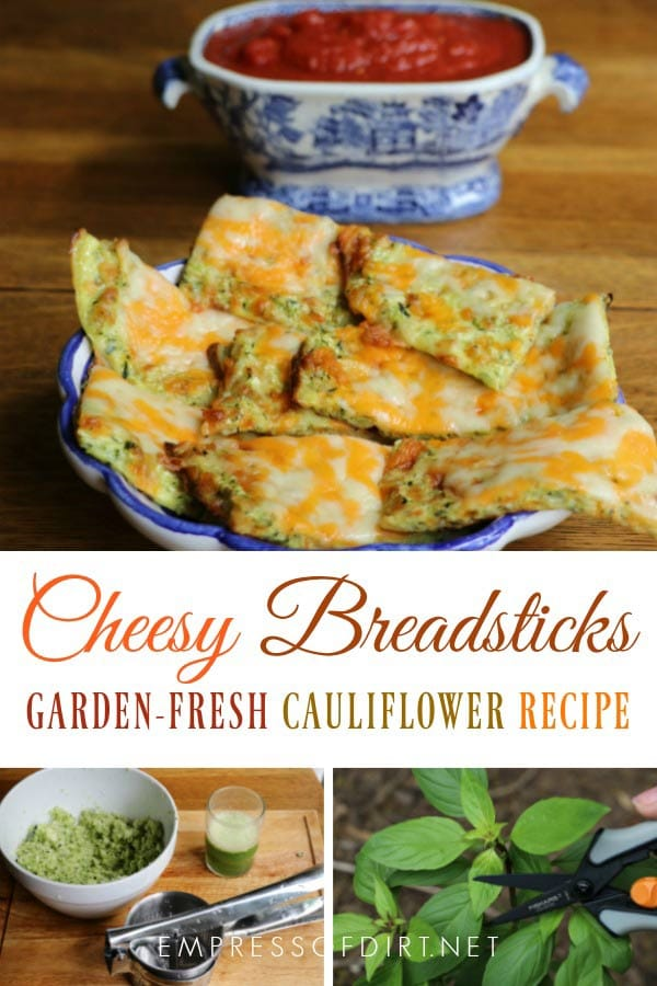 This garden fresh cheesy cauliflower breadstick recipe is simply delicious.