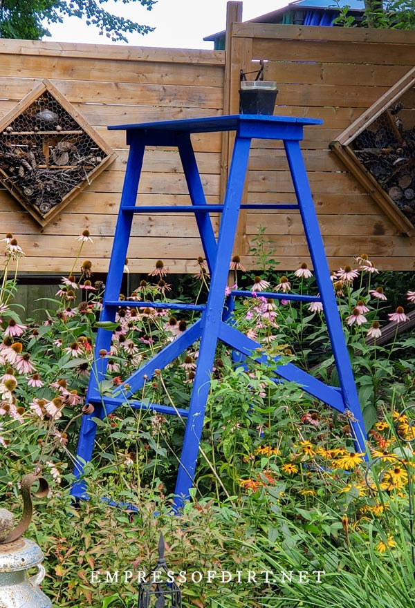 Homemade decorative garden ladder in the style of vintage painter's ladder, painted blue.