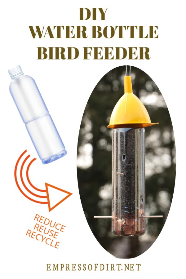 Bird feeder made from a plastic water bottle.