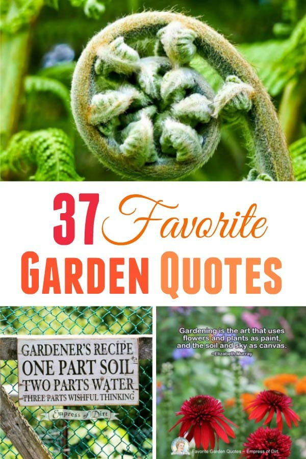 37 Favorite garden quotes, memes, and quirky expressions.