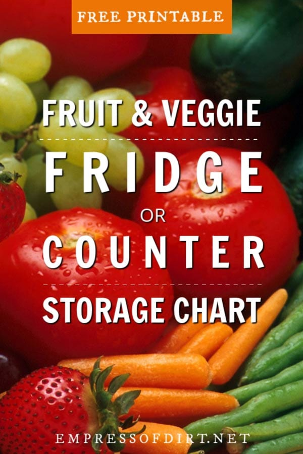 Fridge or Counter? Fruit and Vegetable Storage Guide for Maximum Freshness