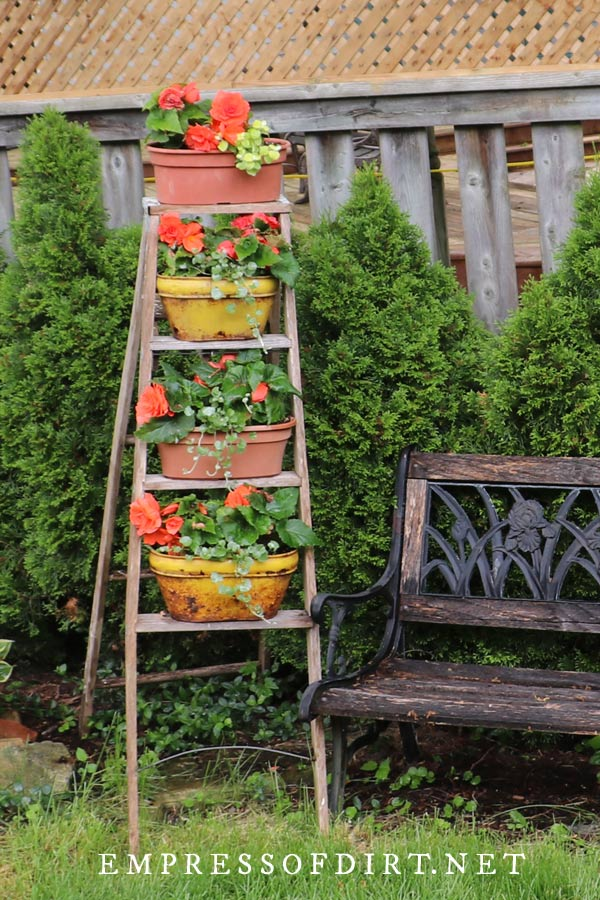 Pick a theme for your garden ladder. This one is orange and yellow.