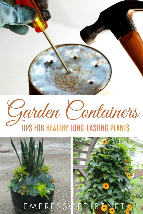 Creative ideas and tips for healthy, long-living plants in garden containers.