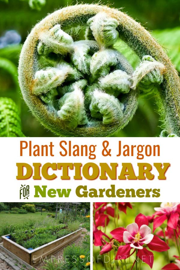 Gardener's Dictionary   Glossary of Terms and Jargon