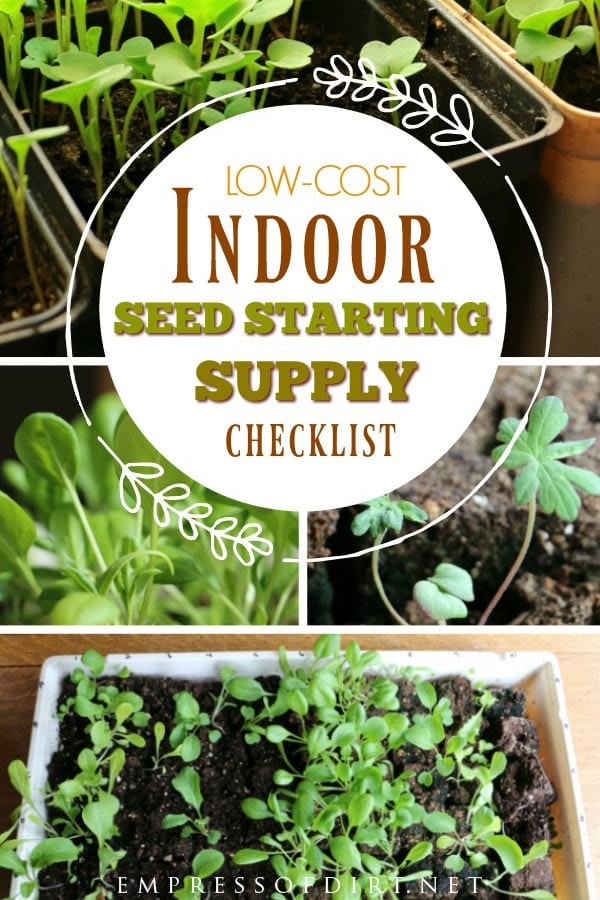 Best Low-Cost Indoor Seed Starting Supplies