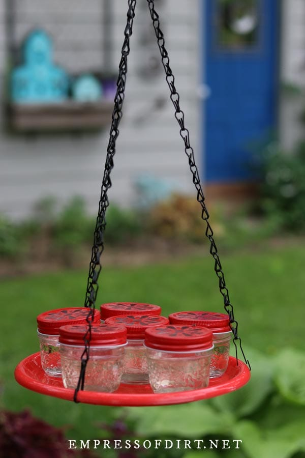 Mason jar hummingbird feeders with red daisy lids.