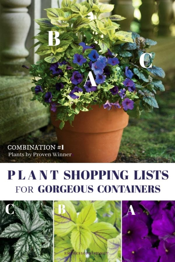 Plant shopping list with Proven Winners.
