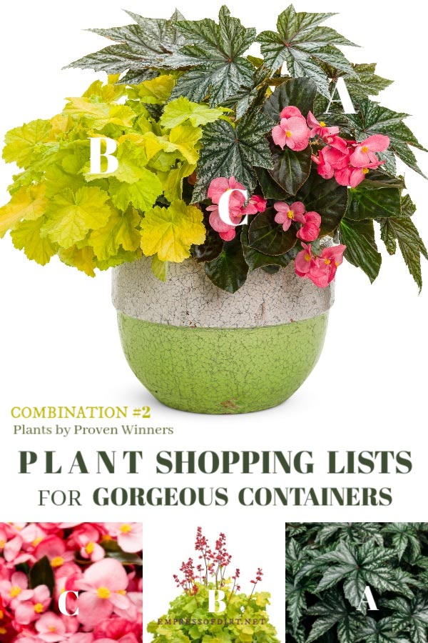 Plant combinations by Proven Winners.