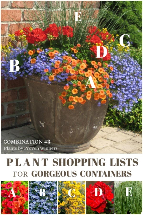 Plant combination ideas by Proven Winners.