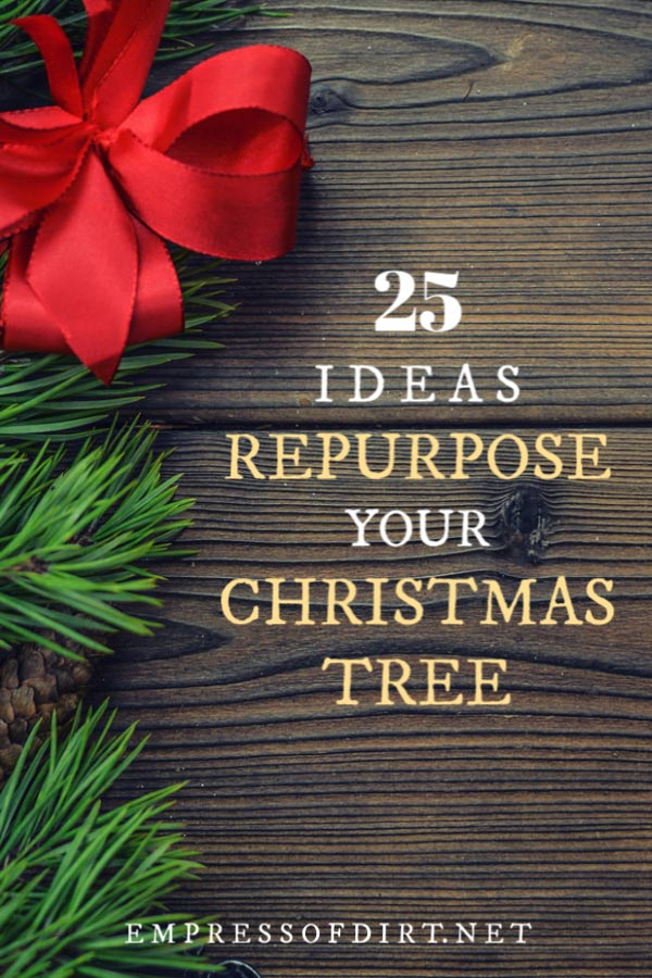 Crafts and decor items to make from your Christmas tree after the holidays.