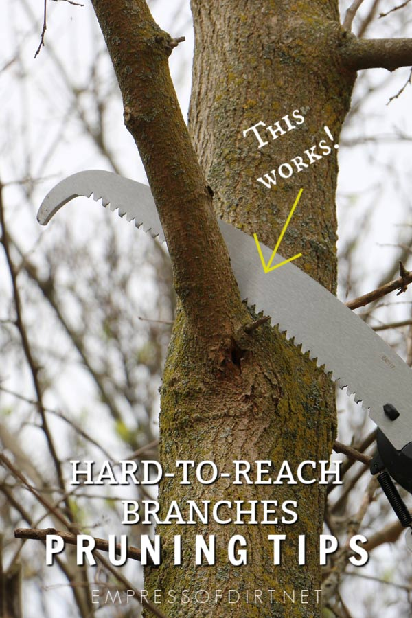 If you have trees or shrubs that need trimming, and the branches are just out-of-reach, consider using an extendable pruning and saw tool. The long pole allows you to stand a safe distance away as you work, and the trimmed branches fall safely to the ground.