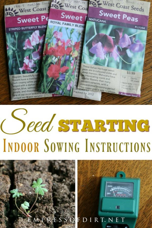 Step-by-step instructions for sowing seeds indoors for outdoor planting.