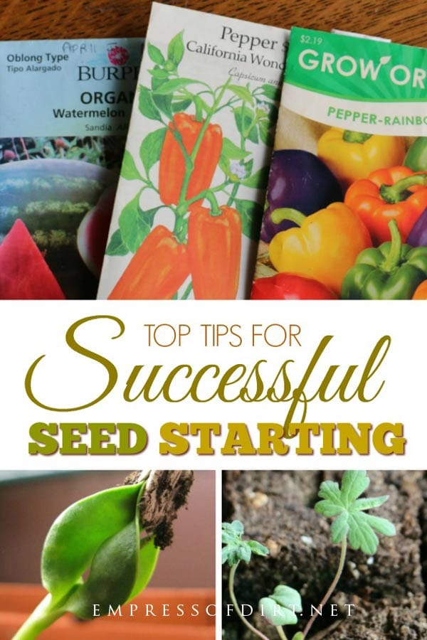Best tips for successful seed starting for healthy, happy plants.