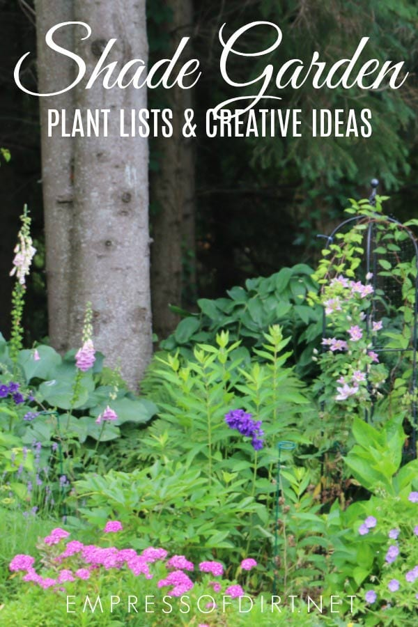 Tips for Shade Garden Plants & Design Ideas