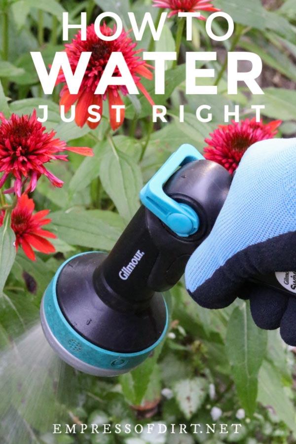 Watering nozzle spraying water in garden.