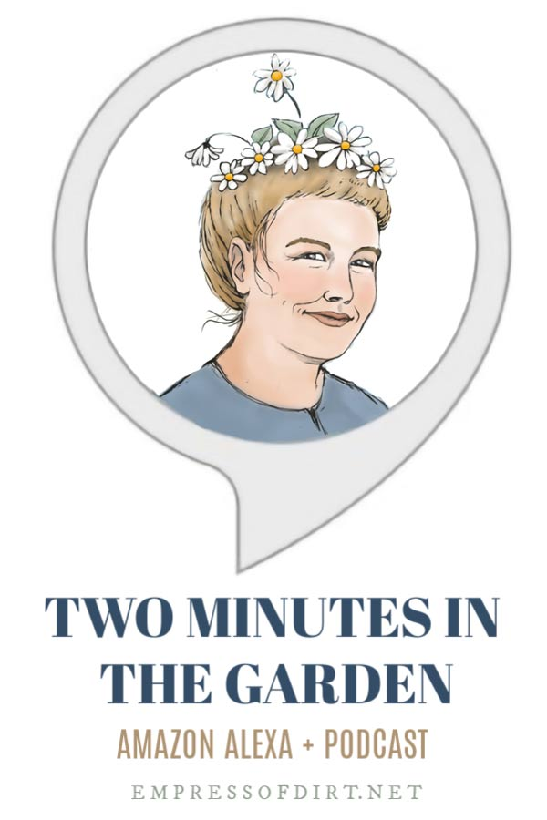 Two Minutes in the Garden – Gardening Podcast