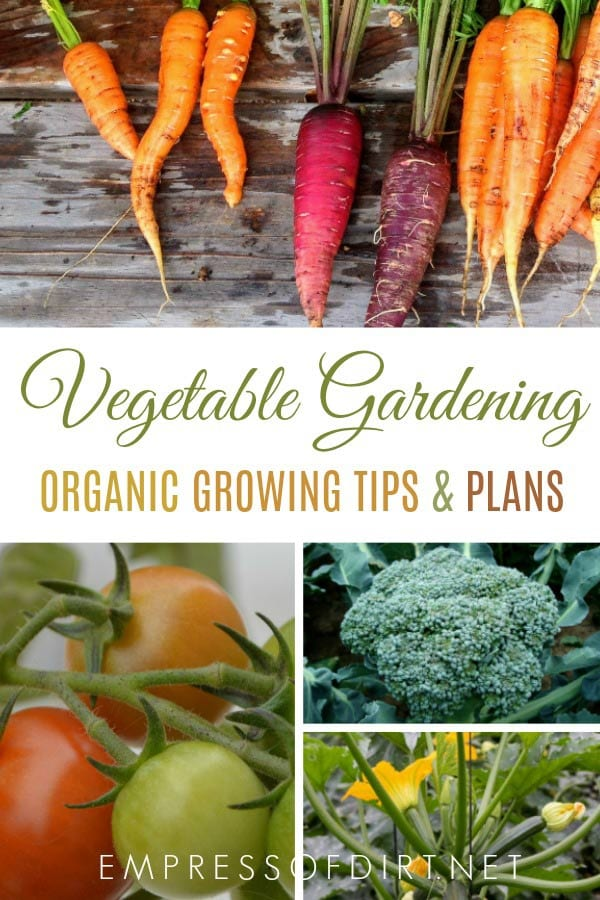 Vegetable growing tips and plans for organic gardeners