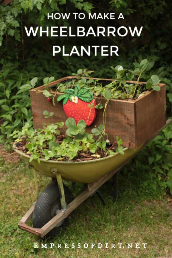 Old wheelbarrow made into a strawberry planter.