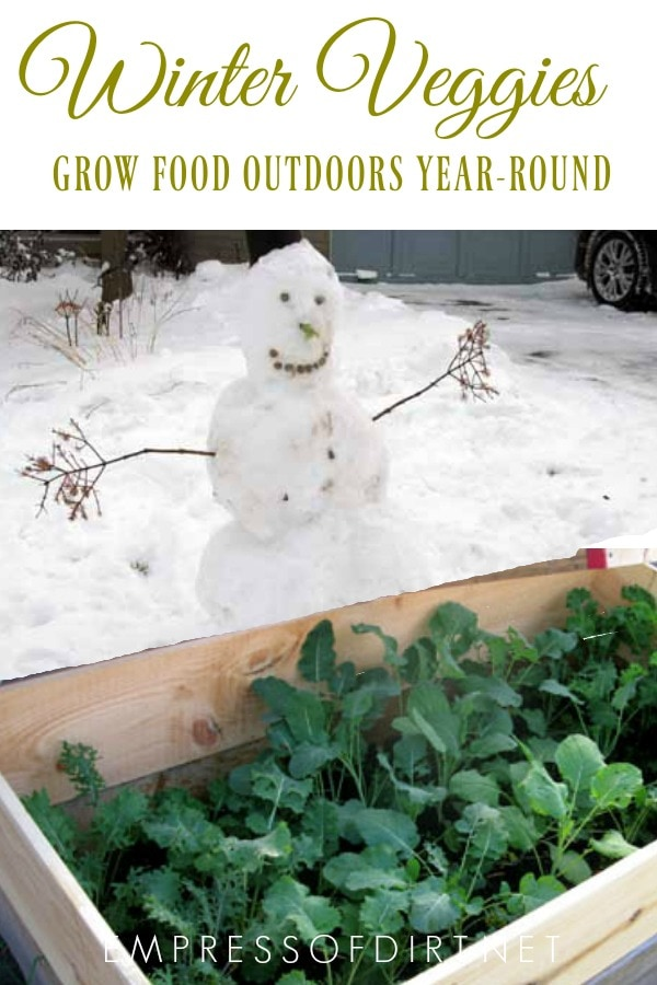 Yes, you can grow vegetables outdoors all year-round even in winter in cold climates.