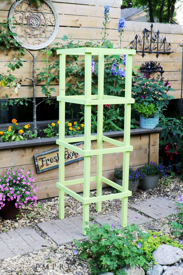 Wood tomato cage for supporting vine tomato plants.