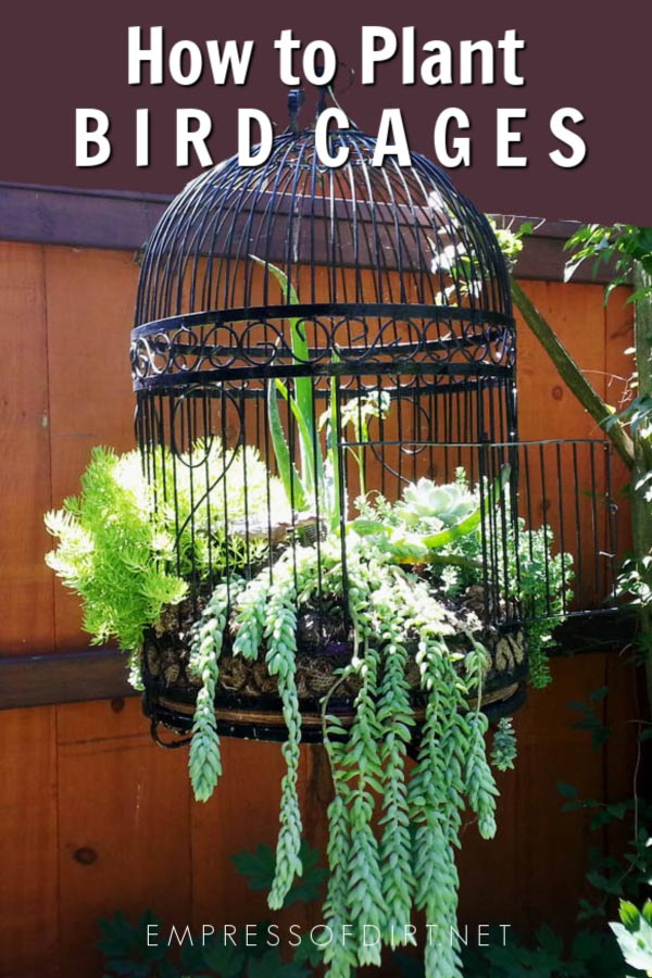 How to Make a Birdcage Flower Planter
