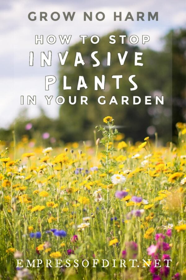 Grow No Harm: How Gardeners Can Help Control Invasive Plants