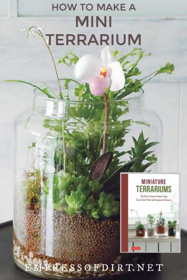 Mini terrarium jar with orchid flower and greenery.