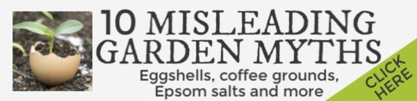 This links to an article on popular garden myths involving eggshells, Epsom salts, and more.