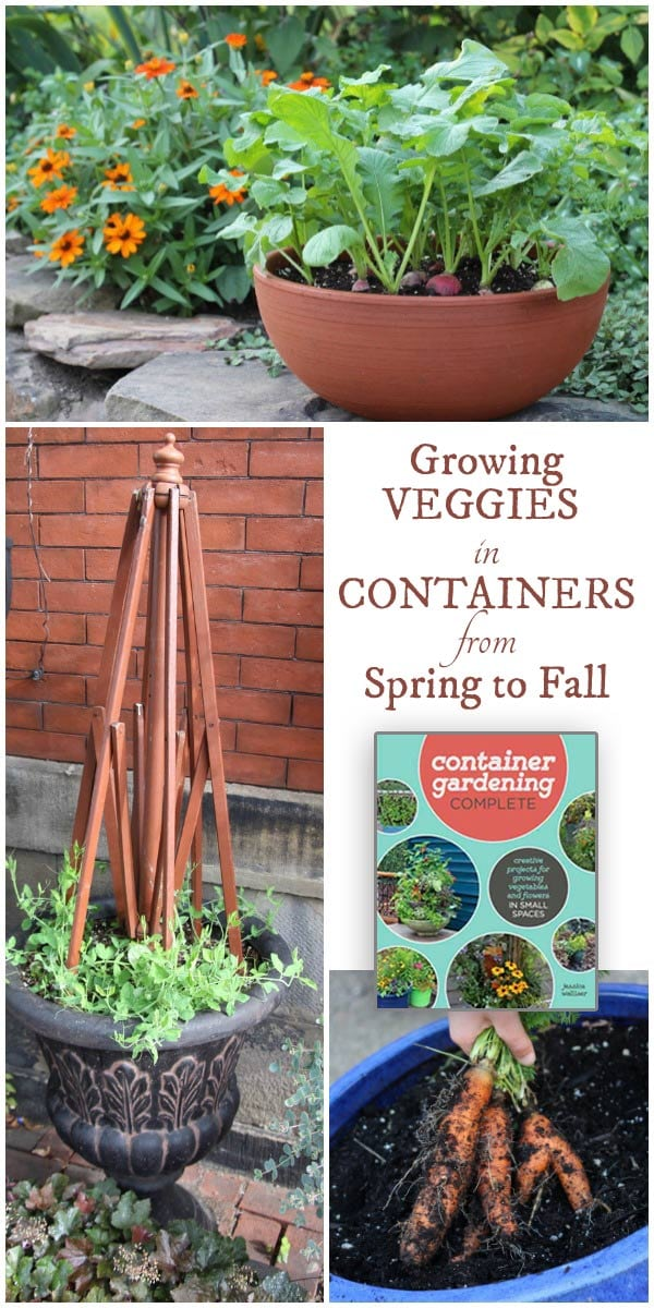 Jessica Walliser, author of the new book Container Gardening Complete: creative projects for growing vegetables and flowers in small spaces shares her best tips for a continuous, delicious harvest from spring to fall.