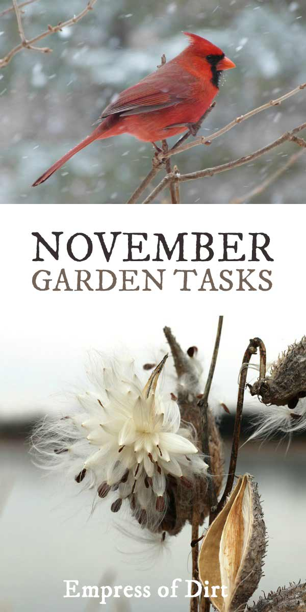 What to make and grow in November for year-round gardeners in a cold climate.