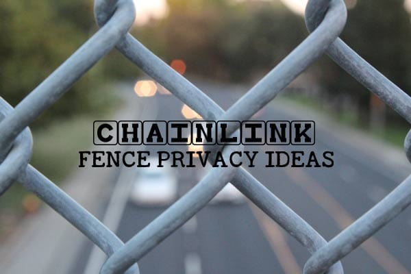 Ways to hide ugly chain link fence and add privacy to your backyard garden.