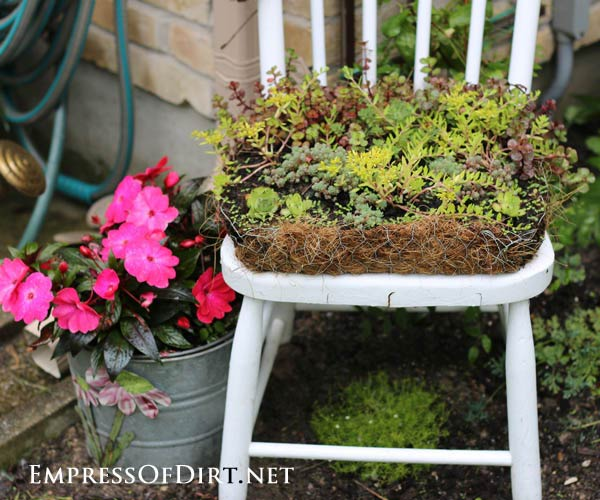 Old wooden chairs make great garden planters. Sit some flower pots on top or build a succulent planter like the one you see here with chicken wire and coir.
