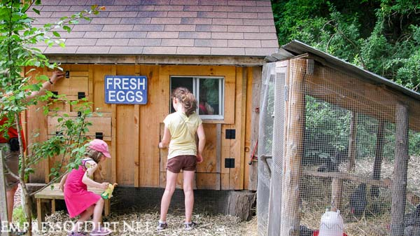 A shed-style chicken coop with adjoining pen