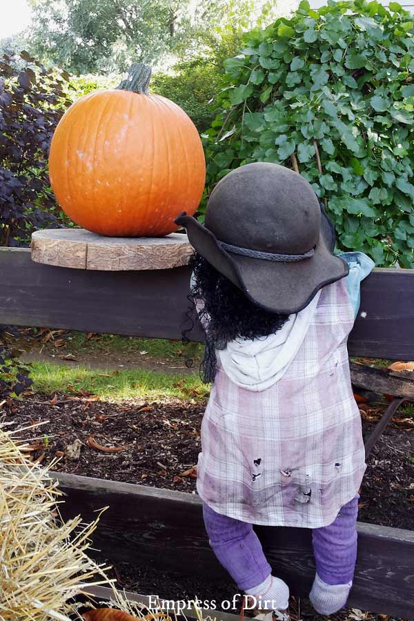 Fast & Creative Pumpkin Decorating Tips (No Carving)