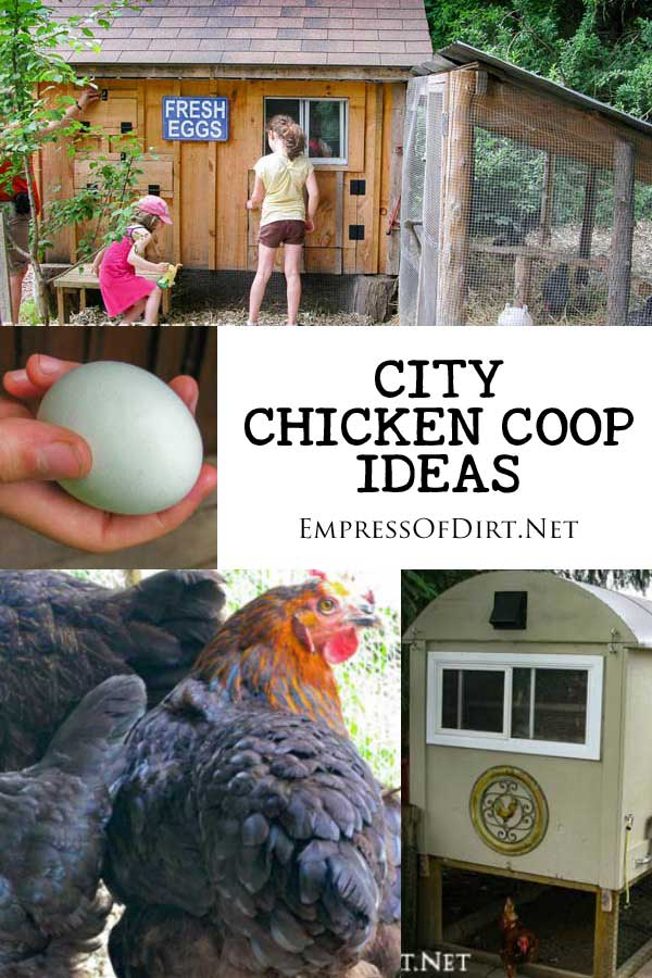 City chicken coop ideas including a shed, caravan, chicken tractor, and cabinet-style hen house.